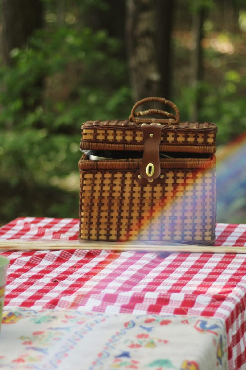 Picnic hamper on picnic table in a forest
